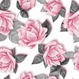 Teste padrão sem emenda floral com rosas bonitas 24 ilustração stock