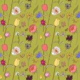 Teste padrão sem emenda floral com wildflowers Fotografia de Stock