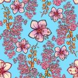 Teste padrão sem emenda floral da mola fresca no fundo azul Fotografia de Stock