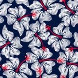 Teste padrão sem emenda floral do bordado tropical branco do hibiscus ilustração stock
