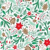 Teste padrão sem emenda floral do inverno do vetor Fundo da flor da poinsétia do Natal ilustração royalty free