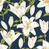 Teste padrão sem emenda floral do vetor com lírios brancos Imagem de Stock Royalty Free