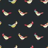 Teste padrão sem emenda floral do vetor Pássaros bonitos da cor no estilo popular Fotos de Stock Royalty Free