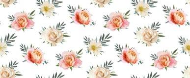 Teste padrão sem emenda floral do vetor, projeto do backgorund: rosa de jardim p Imagens de Stock Royalty Free