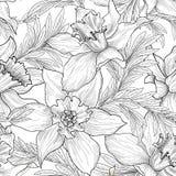 Teste padrão sem emenda floral A flor e as folhas gravaram o fundo Fotografia de Stock Royalty Free