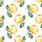 Teste padrão sem emenda floral Flores amarelas Fotos de Stock