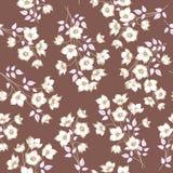 Teste padrão sem emenda floral Fundo da flor de Astract Seaml floral Fotografia de Stock