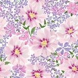 Teste padrão sem emenda floral Fundo da flor Texto sem emenda floral Fotografia de Stock