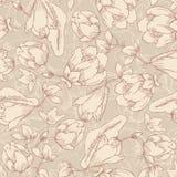 Teste padrão sem emenda floral, textura infinita com as flores no vintage ilustração stock