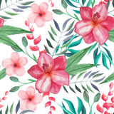 Teste padrão sem emenda floral tropical da aquarela Fotografia de Stock Royalty Free