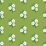 Teste padrão sem emenda floral verde branco simples Ilustração Royalty Free