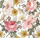 Teste padrão sem emenda Flores isoladas realísticas Fundo do vintage Malva do hibiscus de Rosa da camomila wallpaper Gravura do d ilustração royalty free