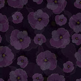 Teste padrão sem emenda, flores transparentes contra um fundo escuro Imagem de Stock