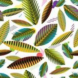 Teste padrão sem emenda, folhas tropicais geométricas abstratas Fotos de Stock Royalty Free