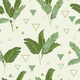 Teste padrão sem emenda Fundo tropical das folhas de palmeira Folhas da banana Imagens de Stock