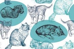Teste padrão sem emenda Gatinhos pequenos bonitos Desenho feito à mão dos gatos Fotografia de Stock Royalty Free