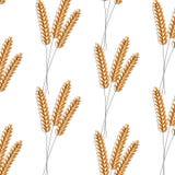 Teste padrão sem emenda Ilustração do vetor Projeto da ilustração do ícone do vetor do fundo do trigo da agricultura cevada ilustração royalty free