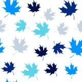Teste padrão sem emenda infinito das folhas de bordo Fotografia de Stock Royalty Free