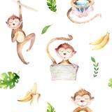 Teste padrão sem emenda isolado berçário dos animais do bebê Desenho tropical do boho da aquarela, macaco bonito do desenho tropi Foto de Stock Royalty Free