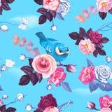 Teste padrão sem emenda lindo com as rosas selvagens metade-coloridas e o pássaro consideravelmente pequeno contra o céu claro az Fotografia de Stock