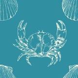 Teste padrão sem emenda marinho Vida de mar Shell e caranguejo tirados mão de vieira da ilustração ilustração do vetor