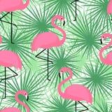 Teste padrão sem emenda na moda tropical com flamingos e folhas de palmeira Fundo exótico da arte de Havaí Imagens de Stock