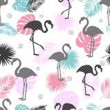 Teste padrão sem emenda na moda tropical do vetor com flamingo ilustração royalty free