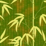 Teste padrão sem emenda o bambu tirado do estilo japonês em um fundo com hieróglifos text a ilustração do vetor Fotos de Stock