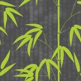 Teste padrão sem emenda o bambu tirado do estilo japonês em um fundo com hieróglifos text a ilustração do vetor Imagem de Stock