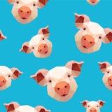 Teste padrão sem emenda - porco no fundo azul Foto de Stock Royalty Free