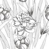 Teste padrão sem emenda preto e branco com flowers-09 Imagem de Stock Royalty Free