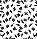 Teste padrão sem emenda preto floral e da folha no fundo branco Fotografia de Stock Royalty Free