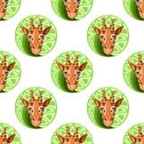 Teste padrão sem emenda principal dos girafas Imagem de Stock Royalty Free