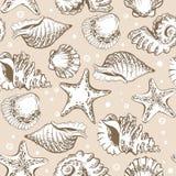 Teste padrão sem emenda, shell bege e estrela do mar com bolhas Imagens de Stock Royalty Free