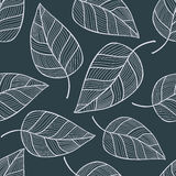 Teste padrão sem emenda tirado mão com folhas Foto de Stock