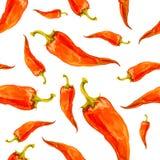 Teste padrão sem emenda tirado mão da aquarela com pimenta vermelha Fotografia de Stock