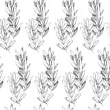 Teste padrão sem emenda tirado mão do grayscale da pena ilustração royalty free
