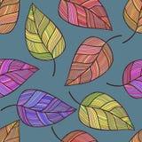 Teste padrão sem emenda tirado mão do vetor com folhas Fotografia de Stock