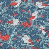 Teste padrão sem emenda tirado mão do vetor com pássaros, ramos, folhas e sorva no fundo pontilhado azul ilustração royalty free