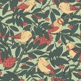 Teste padrão sem emenda tirado mão do vetor com pássaros, ramos, folhas e sorva no fundo pontilhado verde imagens de stock