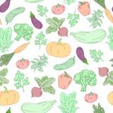 Teste padrão sem emenda tirado mão dos vegetais do vetor Imagem de Stock