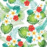 Teste padrão sem emenda tropical com folhas e as flores exóticas Fotografia de Stock