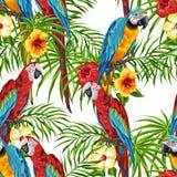 Teste padrão sem emenda tropical com papagaios Ilustração Stock