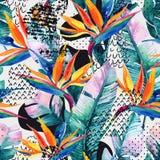 Teste padrão sem emenda tropical da aquarela com flor do pássaro--paraíso As flores exóticas, folhas, forma lisa da curvatura enc ilustração stock