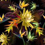 Teste padrão sem emenda tropical de flores do cacto e das folhas exóticas ilustração royalty free