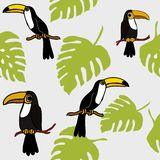 Teste padrão sem emenda tropical dos pássaros e dos lótus dos tucanos, teste padrão repetido Backround da floresta úmida dos páss ilustração do vetor