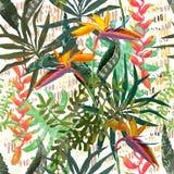 Teste padrão sem emenda tropical moderno Textura ideal para a tela da forma Foto de Stock