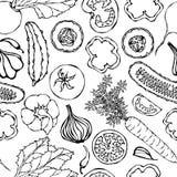 Teste padrão sem emenda vegetal com pepinos, tomates vermelhos, pimenta de Bell, beterraba, cenoura, cebola, alho, pimentão Salad ilustração royalty free