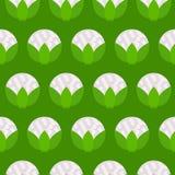 Teste padrão sem emenda verde da couve-flor Fotos de Stock Royalty Free
