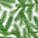 Teste padrão sem emenda verde realístico dos ramos de árvore do abeto no fundo branco Natal, símbolo do ano novo Fotografia de Stock
